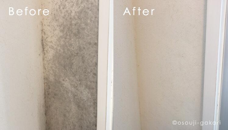 土壁に生えたカビを除去する方法